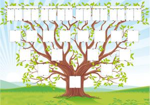 Cours de perfectionnement - Imprimer arbre genealogique ...